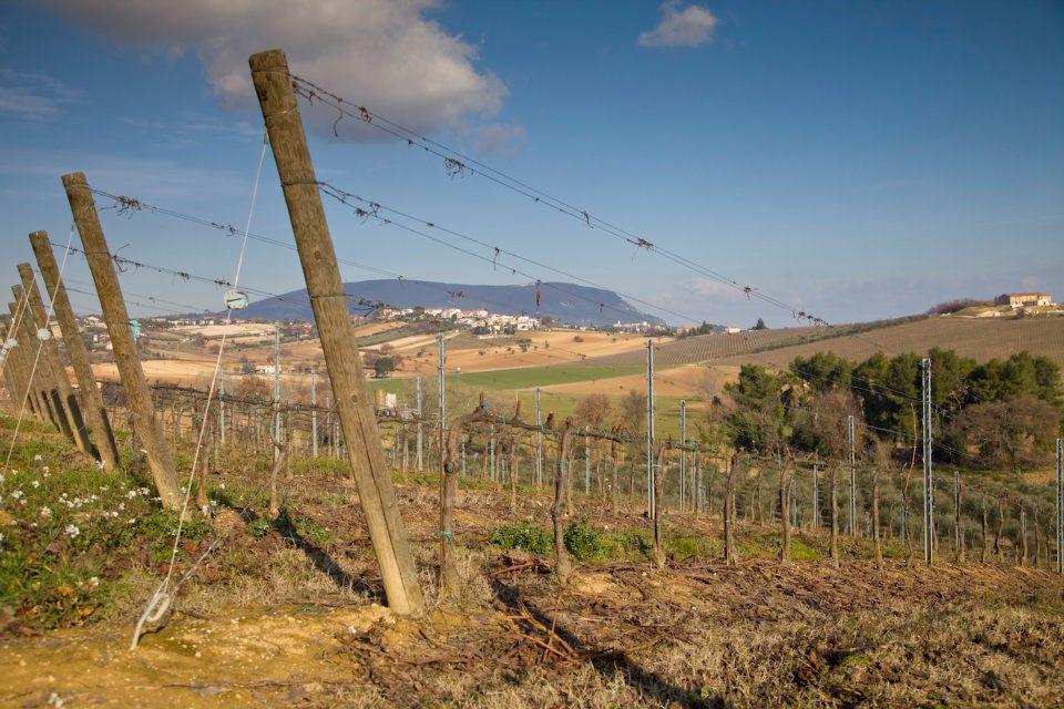 Italy\'s Adriatic Coast (Part 2): Marche and Abruzzo - Matt Stamp ...