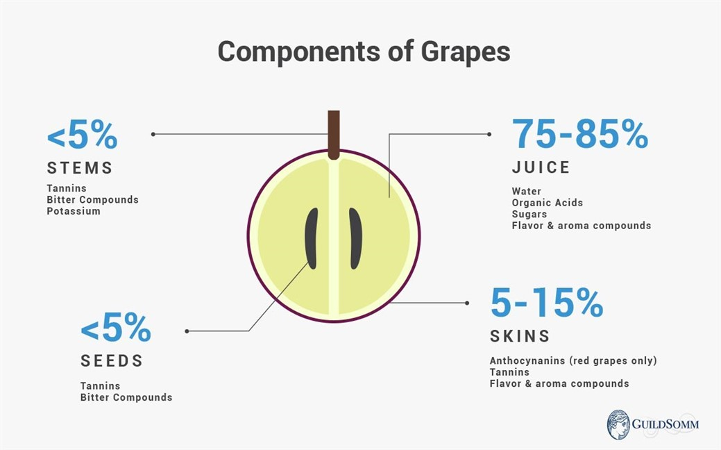 Actual percentages depend on grape variety and berry size.