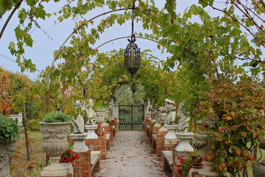 Dorona vines cover an archway on Venice